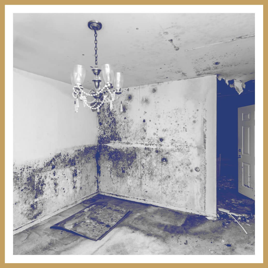Soot,-Mold-&-Water-Cleanup