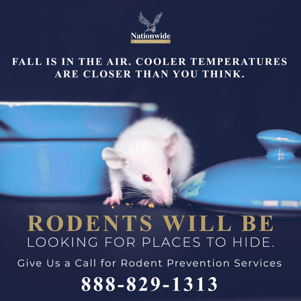 Rodent Prevention Nationwide Maintenance